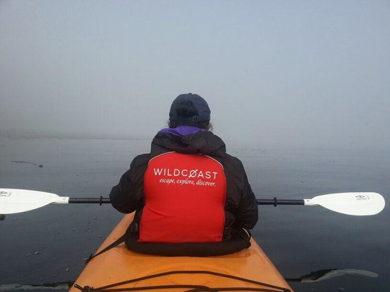 Wildcoast Adventures: I love the Wildcoast motto!!