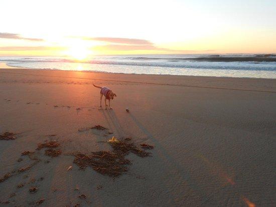 E Luru: Acceso a la playa directo