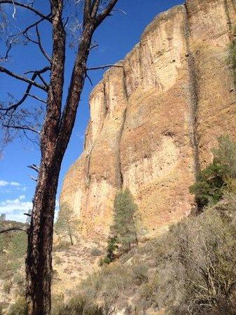 Pinnacles National Park: Balconies Cliffs Trail