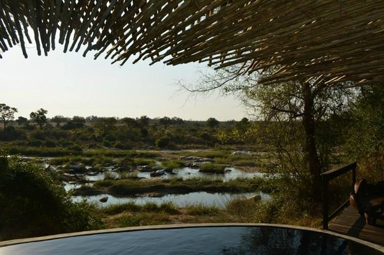 Singita Boulders Lodge: View from the pool