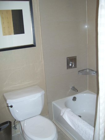 Hilton Hasbrouck Heights / Meadowlands: bathroom