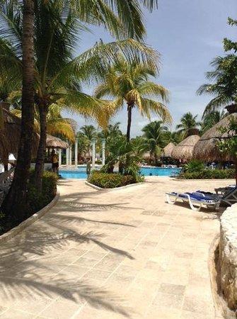 IBEROSTAR Paraíso Del Mar : Pool Area