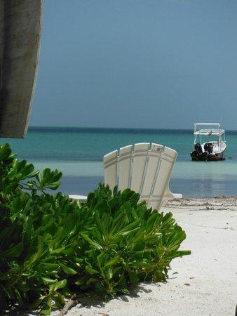 Casa Maya Holbox: Playa
