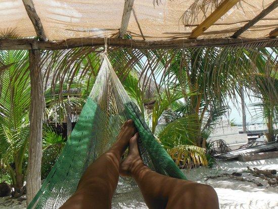 Casa Maya Holbox: Hamaca rica
