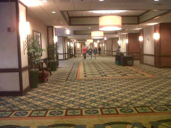 Los Angeles Airport Marriott : lobby