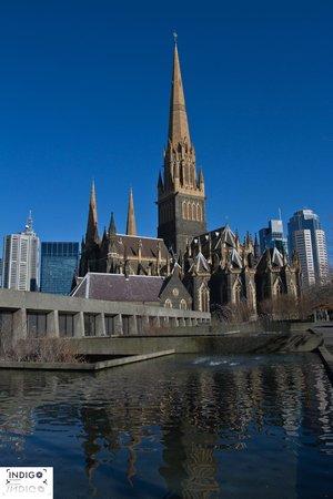 Cathédrale Saint-Patrick : St Patricks Cathedral