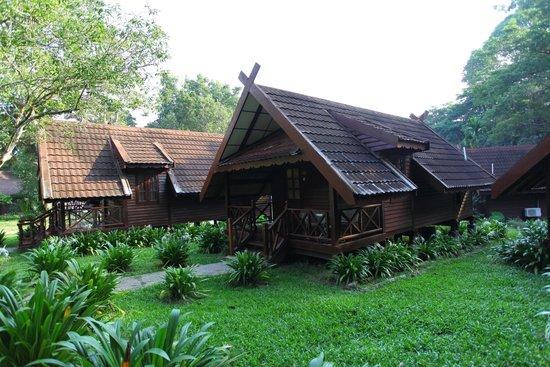 Mutiara Taman Negara : Chalet