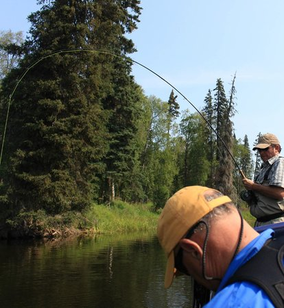 Talkeetna Wilderness River Fishing Guides: Fish on!