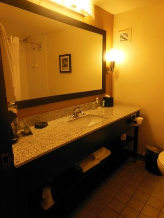 BEST WESTERN PLUS Denver Tech Center Hotel: sink