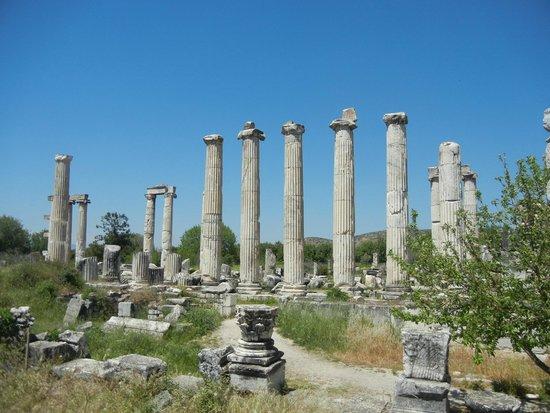 Aphrodisias : Templo de Aphrodite