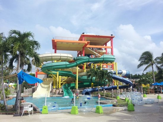 Splash Jungle Waterpark: seven