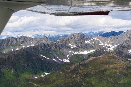 Talkeetna Denali View Lodge & Cabins: Incredible view!!