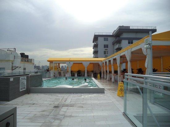 Leslie Hotel : Pileta en la terraza