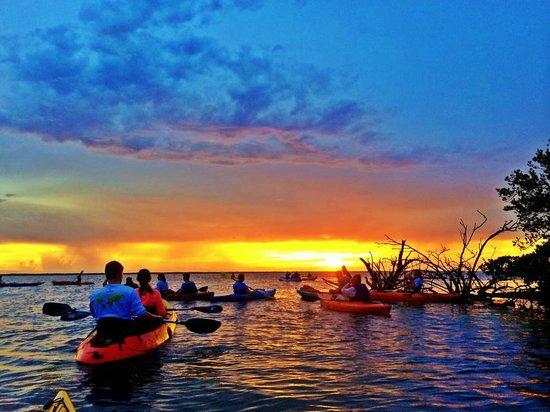 Peace of Mind Kayak Tours