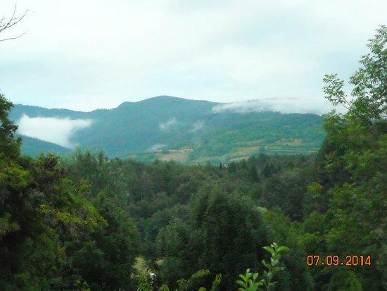 Fattoria di Marena : View from room window