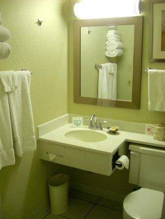 Durango Lodge: Bathroom