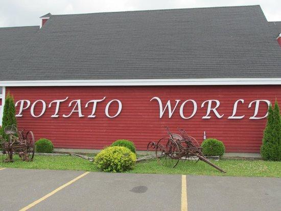 Potato World : The place