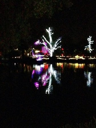 Phoenix Zoo : lights reflecting on the lake at Zoolights