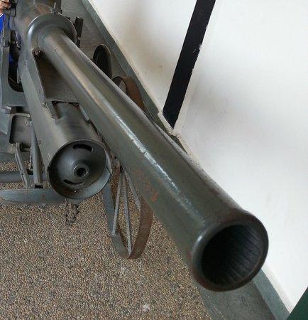 Army Museum: Canon Gun