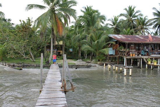 Hotel Tierra Verde: this is the picture I took from the dock