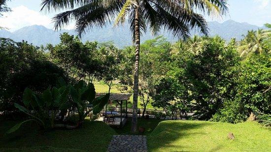 Plataran Borobudur Resort & Spa: Padi cabana garden