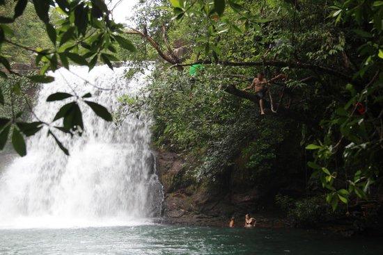 Cham's House Koh Kood Resort: Klong Chao waterfall on Koh Kood
