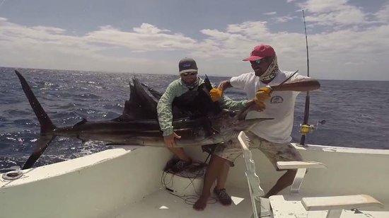 Papagayo Sportfishing: Big Boy.