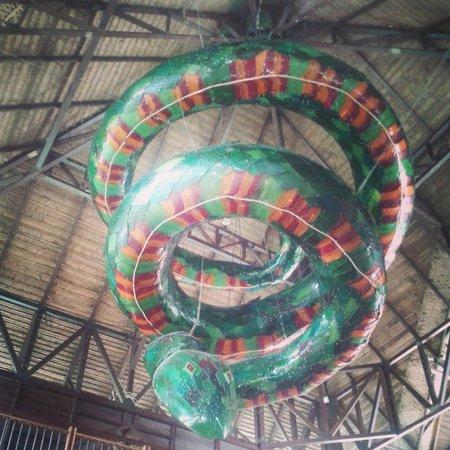 Decameron Decalodge Ticuna : Anaconda
