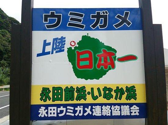 Nagata Inakahama: 看板