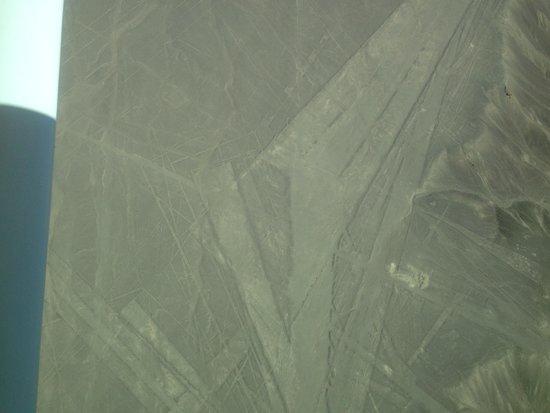 Lineas de Nazca: Nasca line