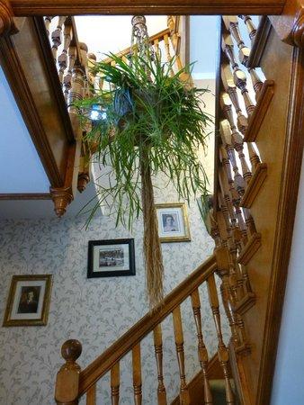 Harbourview Inn: Stairway to second floor rooms