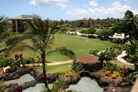 Koloa Landing Resort: and the grounds looking toward the pools