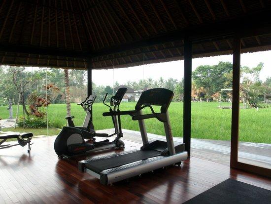 Plataran Ubud Hotel & Spa: Gym