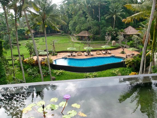 Plataran Ubud Hotel & Spa: Lower pool