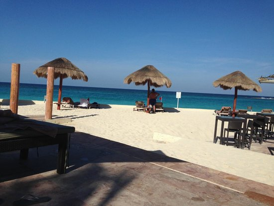 "The Westin Resort & Spa, Cancun : Paradise! The staff's attentive service was excellent, even when relaxing away from ""their areas"
