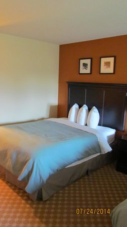 Country Inn & Suites By Carlson, Savannah Gateway : Comfy queen bed