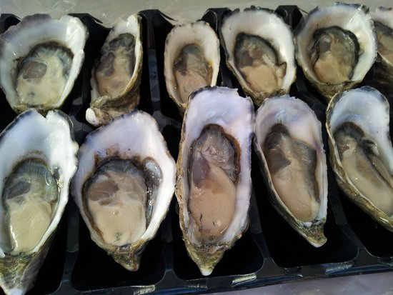 Snellings View: Oysters!