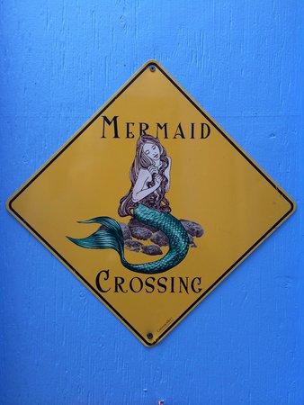 Little Mermaid: Beautiful place!