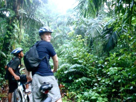 Bali Adventure Tours: Hello Jungle