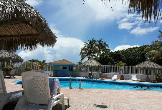 Miami Beach North Plaza Hotel : A boa piscina