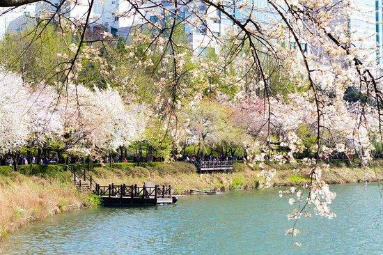 Songpa Naru Park