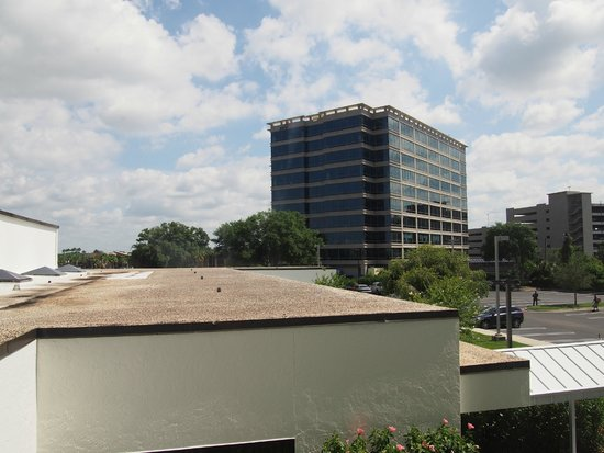 Hilton Tampa Airport Westshore: 2階部屋からの眺め