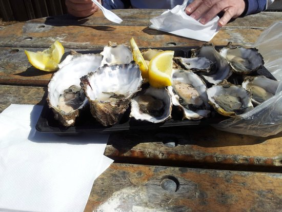 Snellings View: American River - amazing oysters