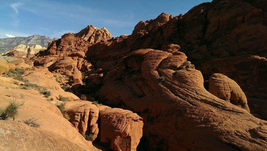 Red Rock Casino Resort & Spa: Awesome hike at Red Rock canyon!