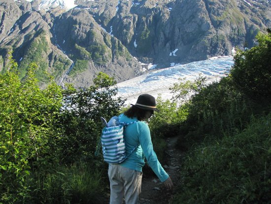 Harding Ice Field Trail: Climbing down. Approaching the tree line.
