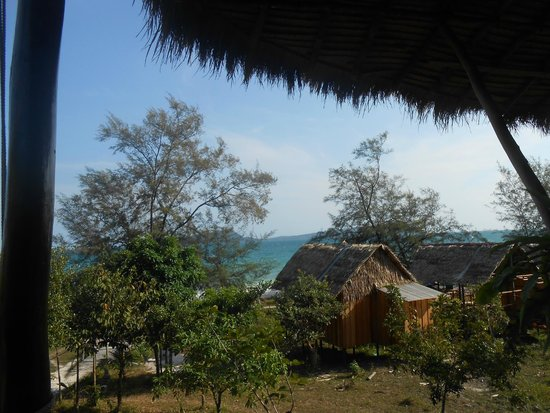 Tree House Bungalows: View from dining area