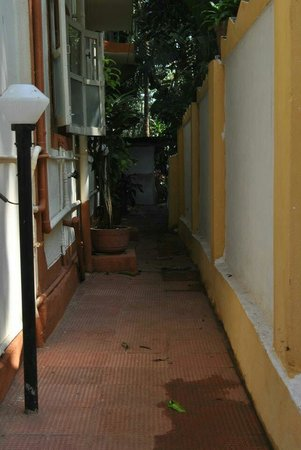Fatima Guest House : Pathway
