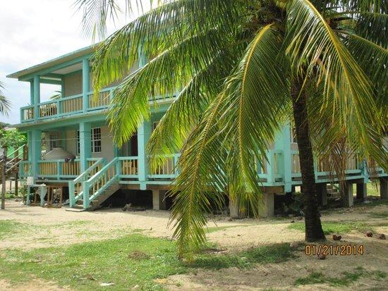 Belizean Dreams : touring the town