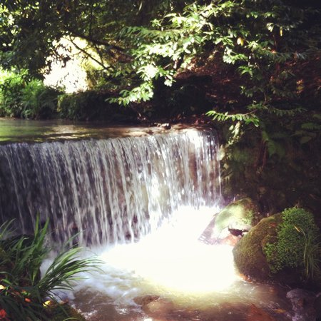 The Waterwheel Inn : Lovely walk down the gardens