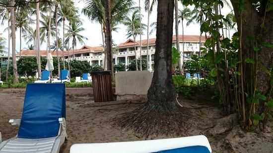 Centara Grand Beach Resort Samui : Taken from beach
